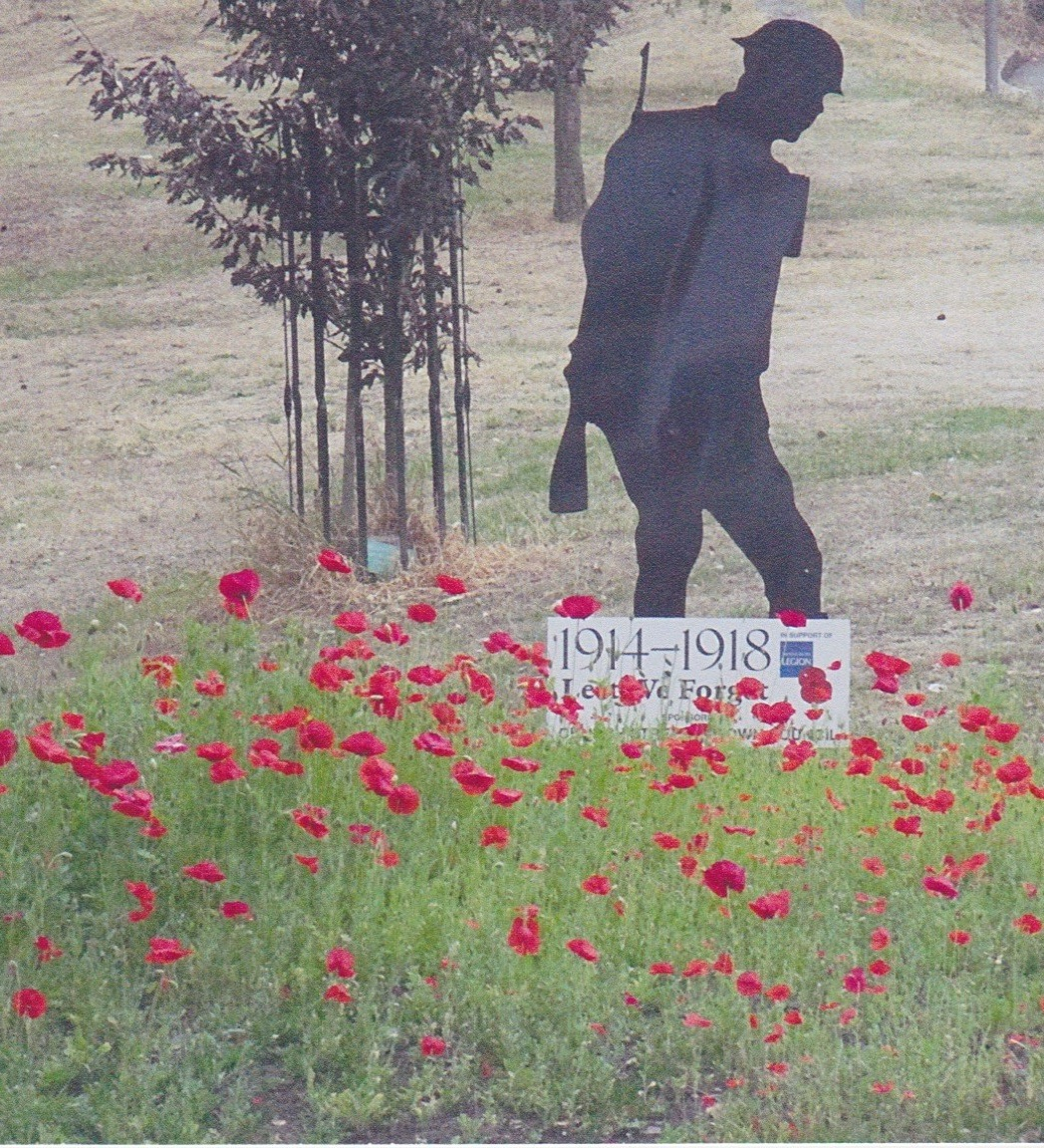 Silhouette of soldier in a poppy field